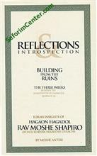 Reflections & Introspection - Building From The Ruins / The Three Weeks (R' Moshe Shapiro)